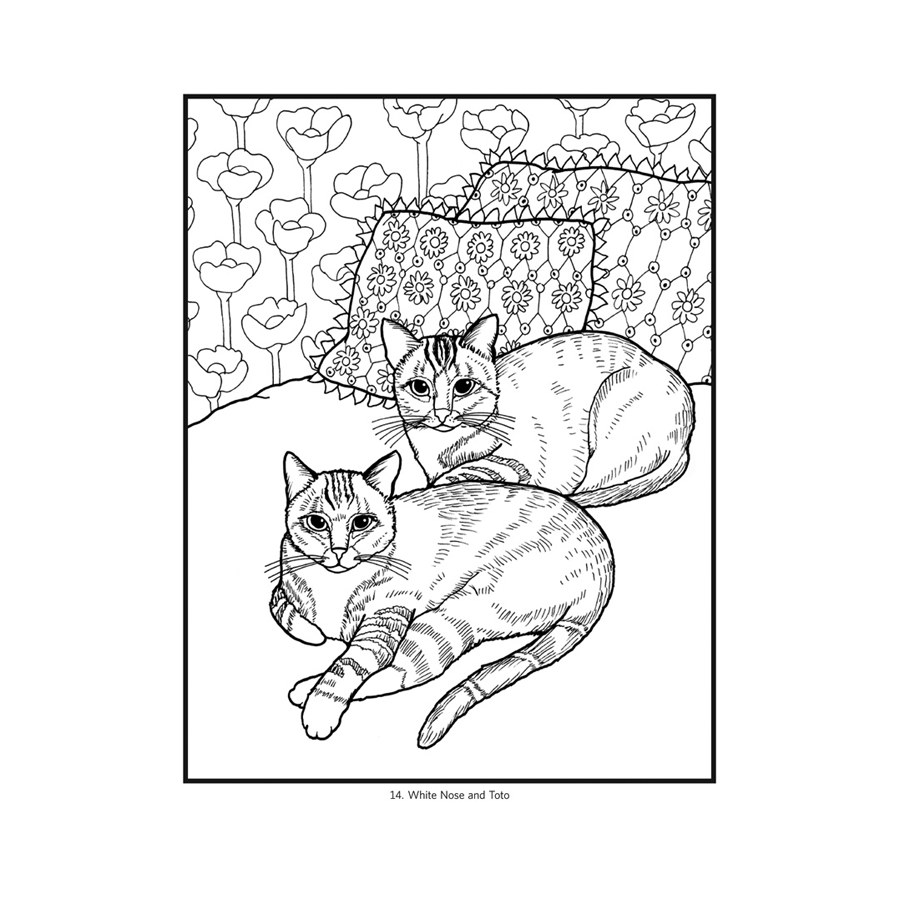 - Pomegranate Cats Coloring Book The Red Balloon Company